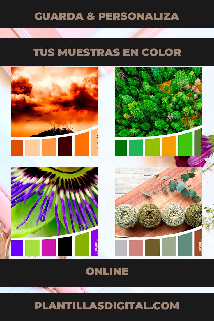 guarda_personaliza_tus_muestras_en_color_online_2