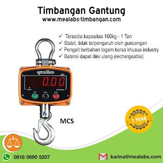 Crane Scale MCS