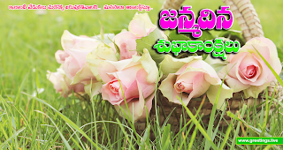 "Fresh rose flowers Telugu birthday greetings with ""janmadina subhakankshalu"""