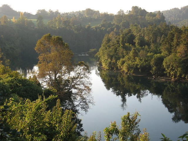 río San Pedro