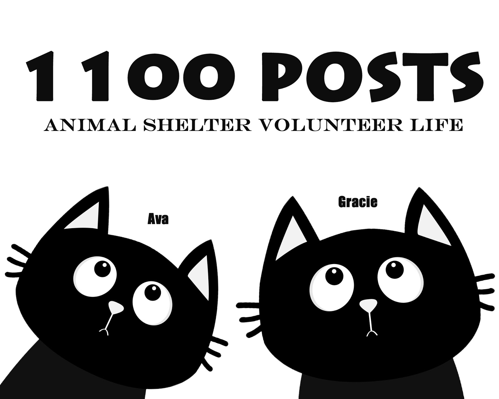 922ea192b Animal Shelter Volunteer Life: 1100 Posts / (Almost) Wordless Wednesday