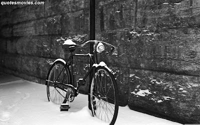 Free best wallpaper Bicycle