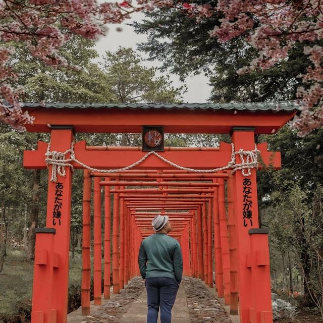 Harga Tiket Masuk Sakura Hills Karanganyar Terbaru