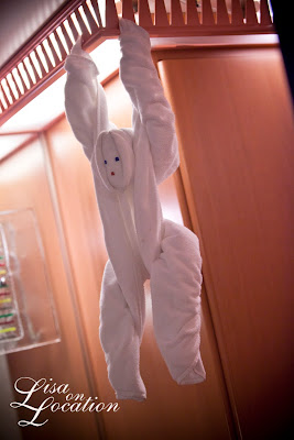 Carnival Conquest cruise ship towel animal monkey, photo by Lisa On Location Photography