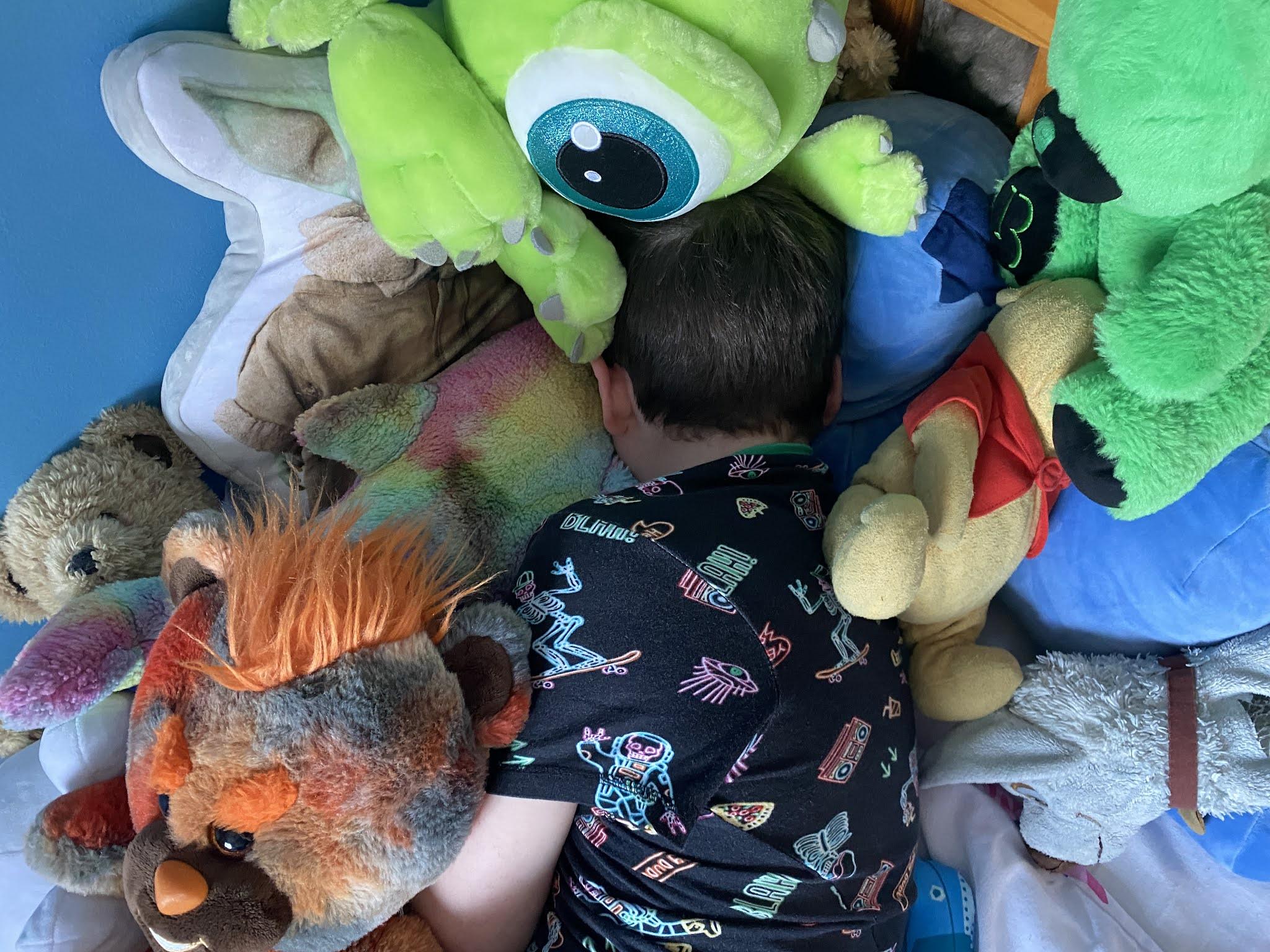 boy buried by teddies