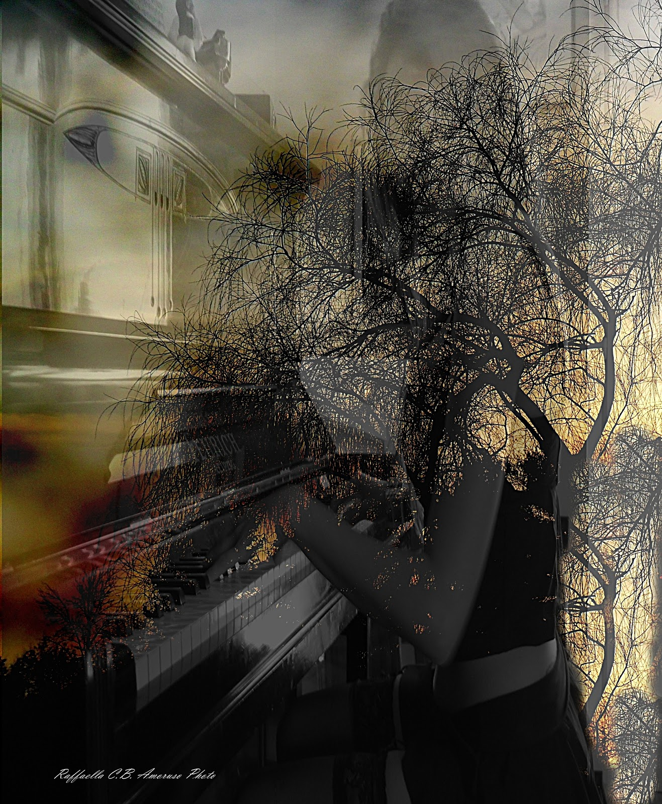 NEROSUBIANCOPOESIA ...Musica & Poesia