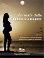 La notte delle stelle cadenti, Valentina Gerini (Romance) - Gli scrittori della porta accanto