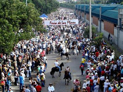 Parade kuda Paso Fino pada Festival Bunga Medellin Kolombia