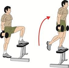 5- Dumbbell Step Ups: