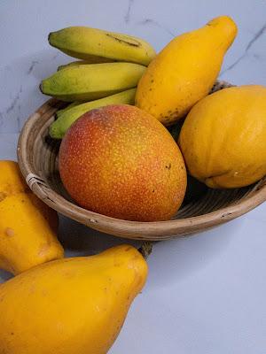 Bounty of fruit