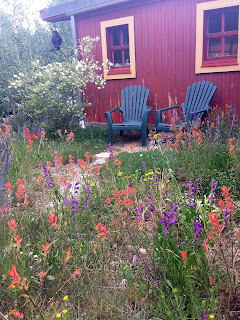 The Landscaping with Colorado Native Plants Conference