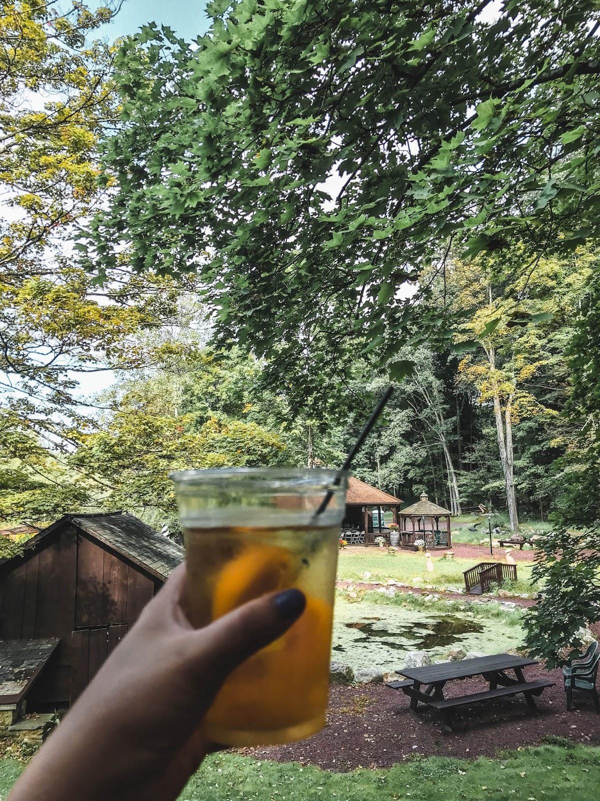 Wine tasting in Poconos Pennsylvania