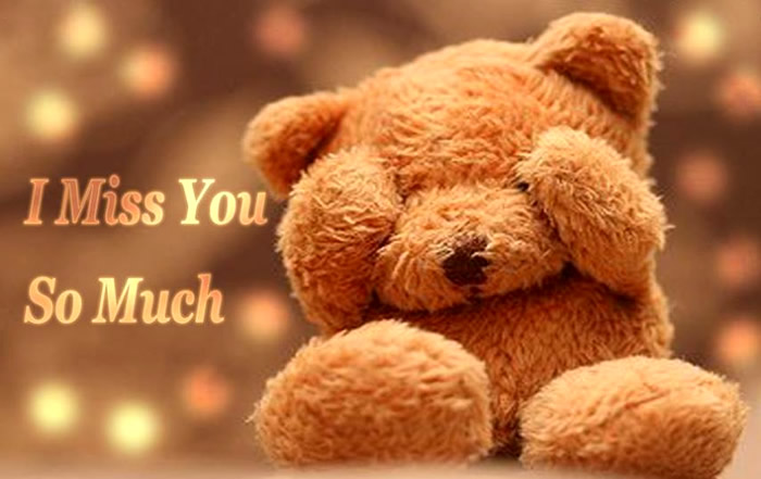 I miss you brown teddy bear wallpaper