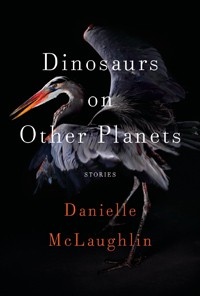 Read Online Dinosaurs on Other Planets by Danielle McLaughlin Book Chapter One Free. Find Hear Best Fiction Books And Novel For Reading And Download.