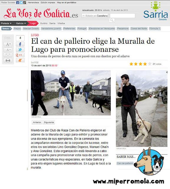 Gala nuestra Can de Palleiro aparece en la Voz de Galicia