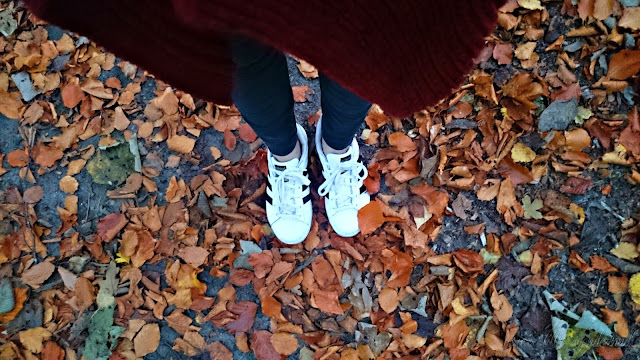 weekreview, autumn, fall, leaves, autumntime, blog, josie´s little wonderland, nature