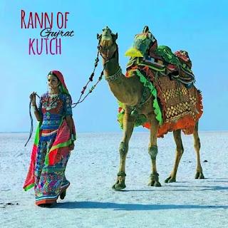 rann of kutch rann of kutch lake rann of kutch map rann of kutch festival rann of kutch gujarat rann of kutch war rann of kutch in gujarat india rann of kutch india rann of kutch salt desert rann of kutch border