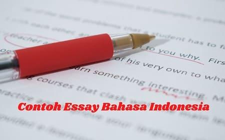 contoh-essay-bahasa-inggris