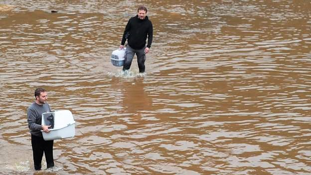 A couple of guys in flood water with cat carriers and their cats inside. This is the first photographic evidence that I have seen of cat rescue in the floods. These guys are in Belgium which was also badly affected.