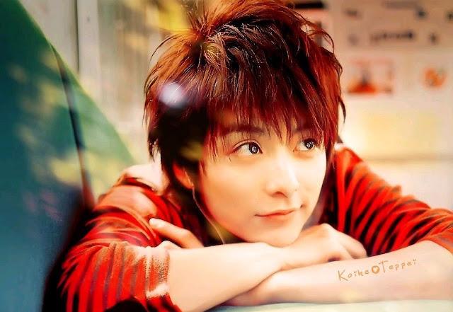 Biodata dan Profil Teppei Koike