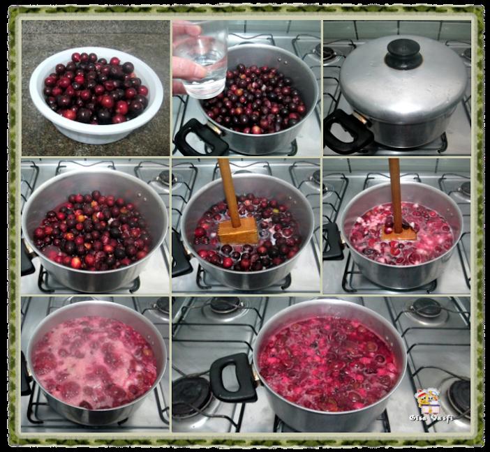 Aceto balsâmico e vinagre de jabuticaba 15