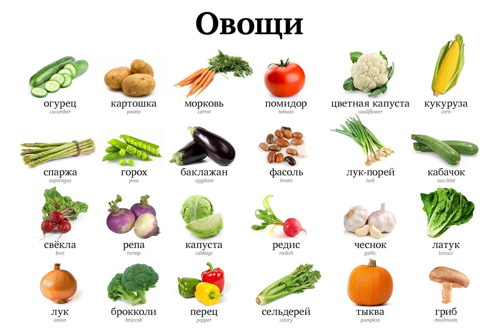 Vegetable Vocabulary