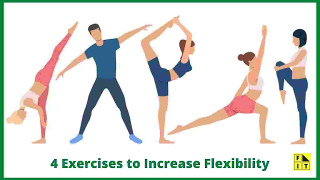 4 Exercises to Increase Flexibility at Home (Complete Beginners Guide)