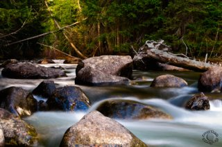 Landscape silky water spring with trees and rocks professionally photographed by Cramer Imaging near Alta, Wyoming