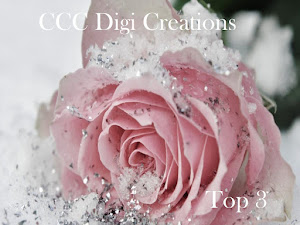 CCC digi challenge
