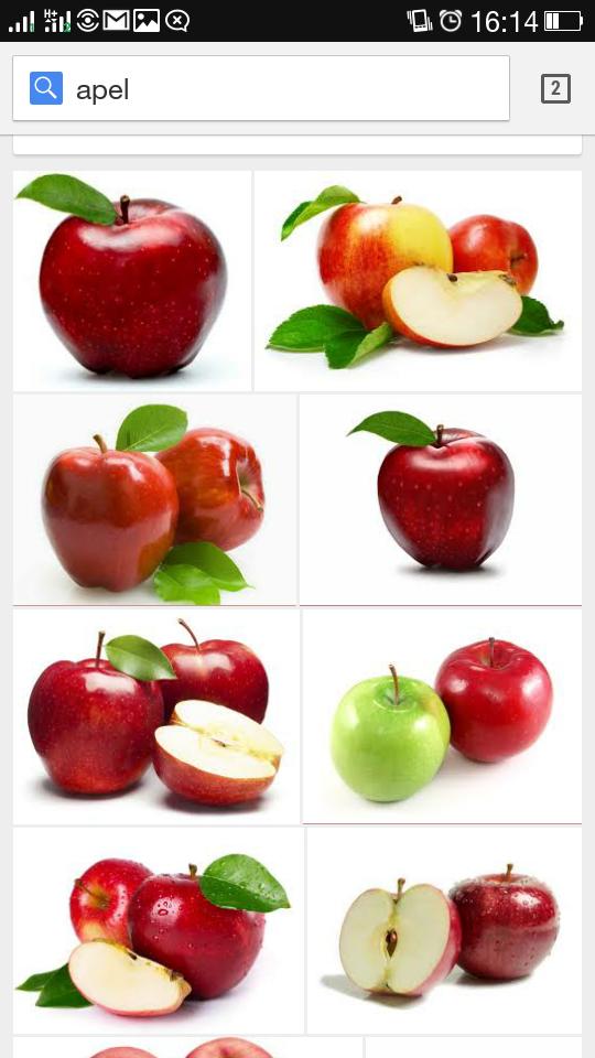 Lebih Baik Pilih Apel Hijau atau Apel Merah?