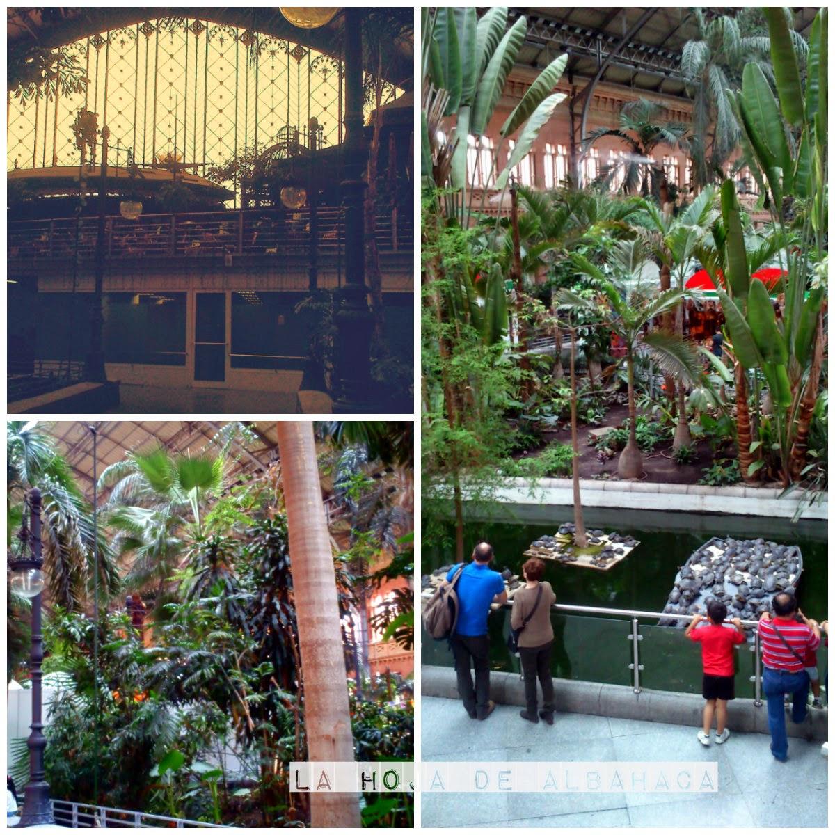 jardín tropical, invernadero,Madrid, Atocha, viajes, trenes