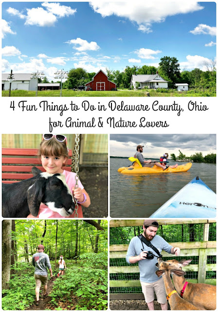 From kayaking to hands-on farms & nature preserves, Delaware County is definitely a must-visit in Ohio for animal & nature lovers.