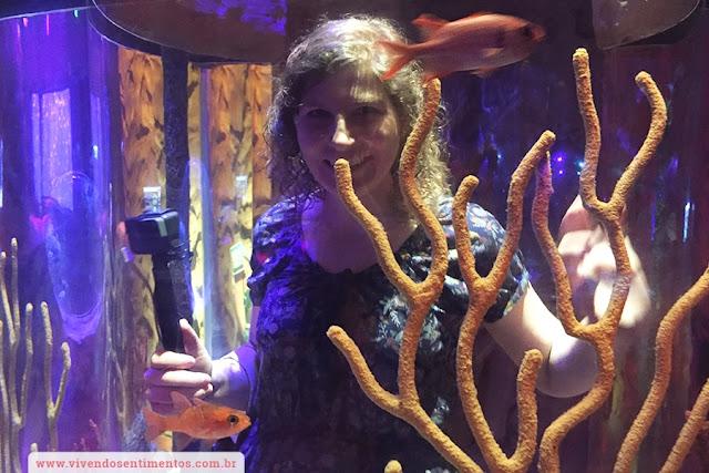 Sea Life Aquarium e Orlando Eye