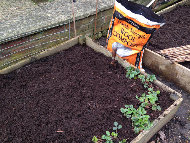 Urban Veg Patch: Improving soil with Dalefoot Double Strength compost