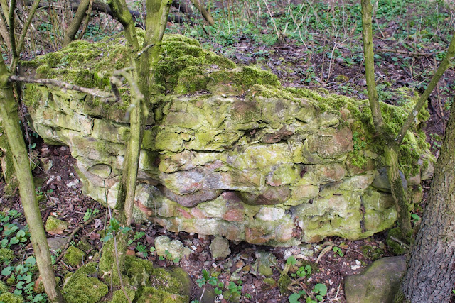 Ruiny zamku w Małej Nieszawce