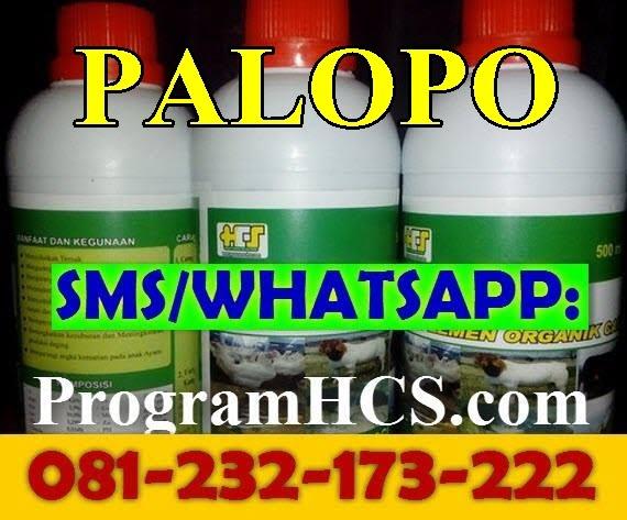 Jual SOC HCS Palopo