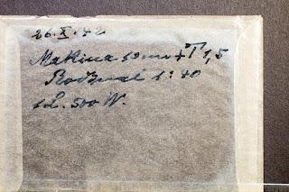 Priener Hut, samt Gebetsbuch und einem Rosenkranz mit großem Kreuz - Beschriftung Pergamintasche  - Glasnegativ 1930-1942