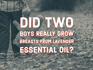 Aromatherapists claim otherwise but lavender oil does have estrogen effects on boys