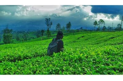 Sebuah gunung kecil yang terletak sempurna di sebelah  Wisata Indah Info Jalur Pendakian Gunung Kembang via Blembem Wonosobo