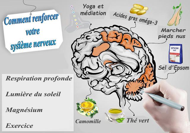 Comment renforcer votre système nerveux
