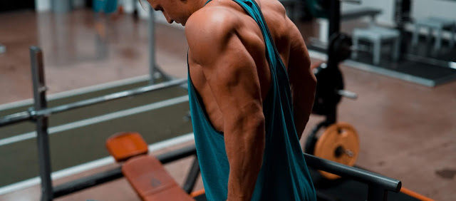 musculation domicle triceps gros bras dips poids de corps