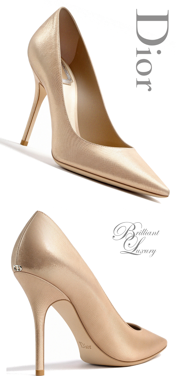 Brilliant Luxury: ♦Dior High Heels Fall 2015-16