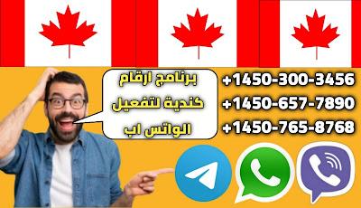 برنامج ارقام كندية جديد ستحصل على رقم كندي مجاني بسهولة خلال دقيقة واحدة فقط لتفعيل الواتس اب تلجرام