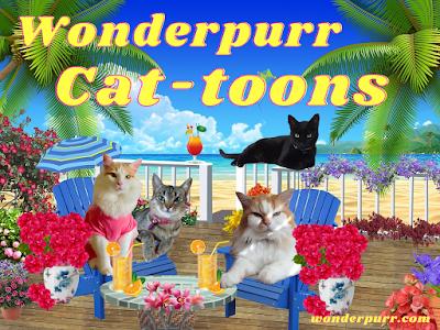 www.wonderpurr.com