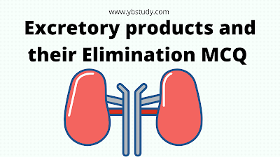 Excretory products and their elimination MCQ