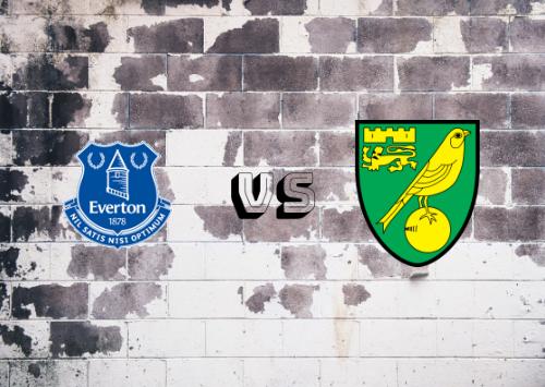 Everton vs Norwich City  Resumen