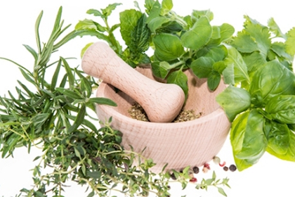 List of medicinal plants and their usefulness for health