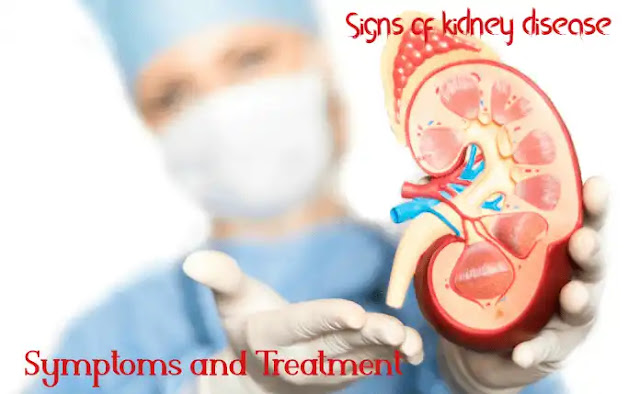 Signs of kidney disease: symptoms and treatment