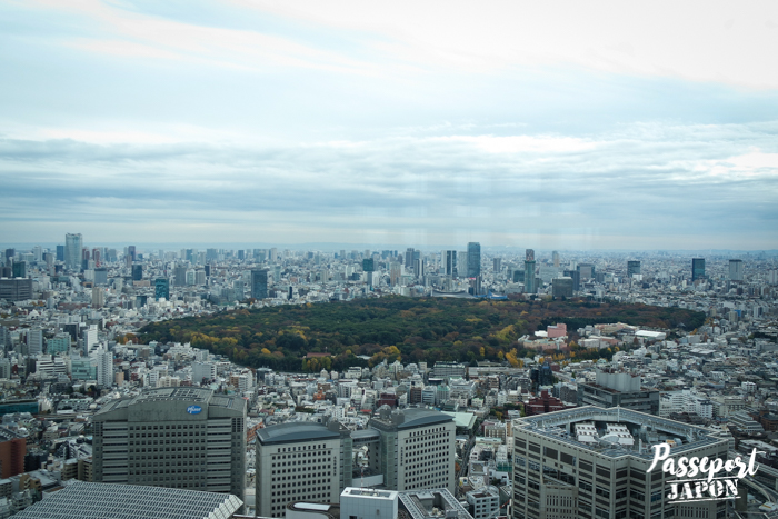 Vue sur le Shinjuku Gyoen depuis l'observatoire sud