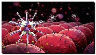 Information About Pancreatic Cancer ezanami.com